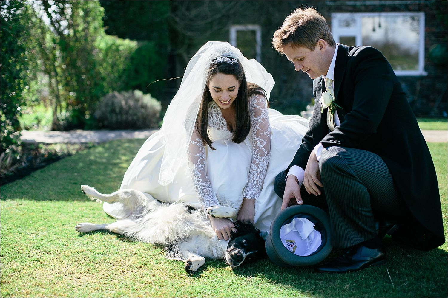 bride and groom stroking their spaniel at their Cheshire wedding