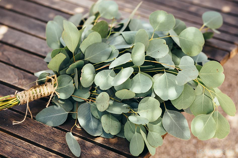 Bridal bouquet of Eucalyptus leaves on a wooden bench