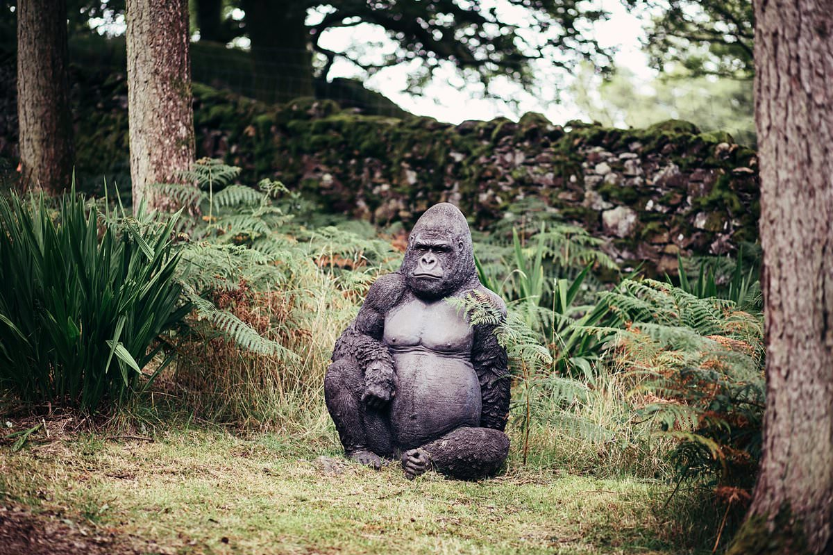 A stone Gorilla in the grounds of Gilpin Lake house