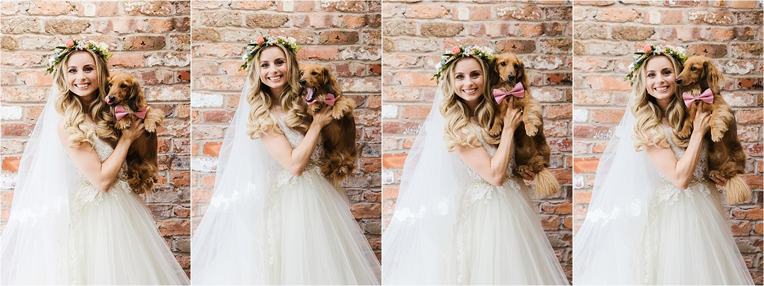 Series of pictures of bride with her dachshund prior to her Cheshire wedding at Sandhole Oak Barn. Dress by Lazarro